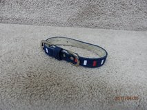 Red-White and Blue Dog Collar Size S in Naperville, Illinois