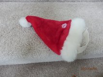 Santa Hat for dog in Naperville, Illinois