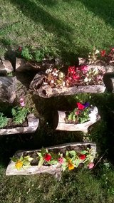 Custom Fairy Gardens in Morris, Illinois