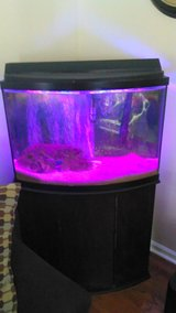 Aqueon 50 gallon Bow Front Fish Tank and stand w/ Penn Flax Cascade filter in Cadiz, Kentucky
