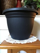 "12"" Planter (plastic/black) in Sugar Grove, Illinois"