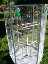 Large Bird Cage in Fort Campbell, Kentucky