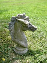Horse head in Fort Campbell, Kentucky