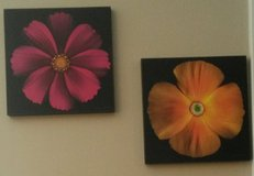 2 flower wall paintings in Fort Campbell, Kentucky