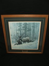 Mountain Majesty Oak Framed Print By Larry Fanning Bull Elk in St. Charles, Illinois