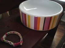 Dog/Cat Bowl and Collar in Glendale Heights, Illinois