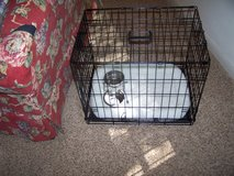 Pet Cage,  Food bowls, & carpet in DeKalb, Illinois
