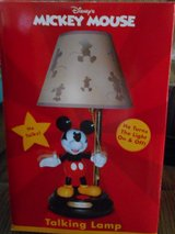 Mickey Mouse light - talks in Manhattan, Kansas