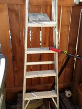 ladder in Vacaville, California