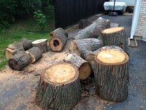 Hard wood free - you haul in Naperville, Illinois