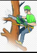 Tree removal in New Lenox, Illinois