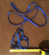 NEW - Harness and lead for cat or miniature dog in Okinawa, Japan