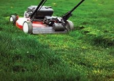 Affordable Lawn & Landscaping Service in Ramstein, Germany
