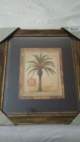 Palm picture frame in San Antonio, Texas