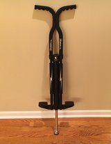 Flybar Master Pogo Stick in Shorewood, Illinois
