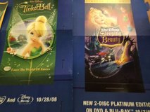 Large Disney Display Posters in St. Charles, Illinois