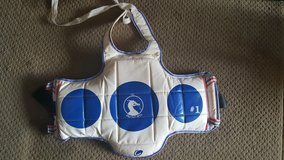 Martial arts sparring gear #1 in Plainfield, Illinois