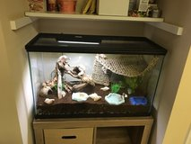 Large Pet Tank and/or free hermit crabs in Wilmington, North Carolina