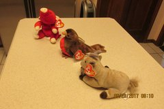 Ty Beanie Babies Farm Animals - 3 Of Them - New w/Original Ty Tags in Kingwood, Texas