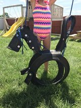 Horse Tire Swing in Joliet, Illinois