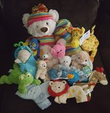 Stuffed Animal Lot in Clarksville, Tennessee