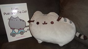 Pusheen book and stuffed cat (ADULT OWNED) in Camp Lejeune, North Carolina