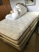 queen size bed and box spring in Naperville, Illinois