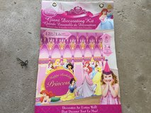 Disney Princess wall mural decorating kits in Naperville, Illinois