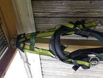Fall safe harness 2 double lanyard in Clarksville, Tennessee