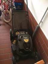 Mower, Trimmer and Weed Whacker in Ramstein, Germany