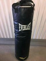 100 pound everlast punching bag in 29 Palms, California