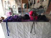 assorted horse tack in Kingwood, Texas
