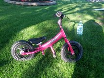 Teach your kid to ride easy! Smaller balance bike in Naperville, Illinois