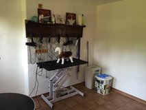 Your dog groomer in Herforst only 5  mins from base in Spangdahlem, Germany