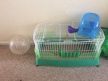 Guinea pig cage and ball in Fort Campbell, Kentucky