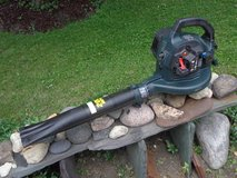 Craftsman Gas Leaf Blower in Naperville, Illinois