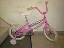 Young Girls Bike in Glendale Heights, Illinois