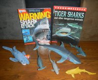 Shark Lover? Toys / Book Lot Ty Beanie Baby Hammerhead Great White Shark Week in Kingwood, Texas