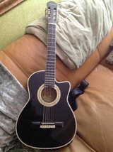 Child's Guitar in Glendale Heights, Illinois
