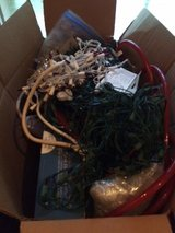 Box of Christmas Lights in Fort Campbell, Kentucky