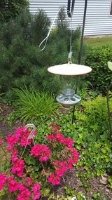 Jar seed birdfeeder in Oswego, Illinois