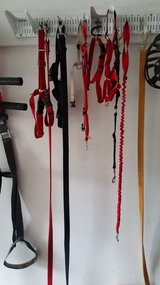 Leashes, gentle harness, chest harness in Batavia, Illinois