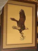 Hugh Hirtle Eagle print in Byron, Georgia
