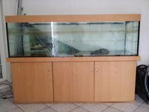 200 gallon Fish Tank in Ramstein, Germany