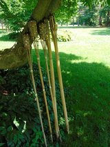 5 Tiki Torches in Sugar Grove, Illinois
