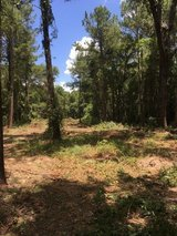 Land 6 acres in Mayport Naval Station, Florida
