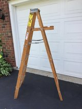 Ladder REDUCED in Lockport, Illinois