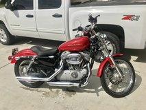 Clean 2004 Harley Sportster 883 Custom in Oceanside, California