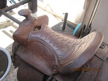 Saddle Big Horn in Fairfield, California