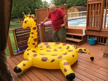 Swim Pool Giraffe in Sandwich, Illinois